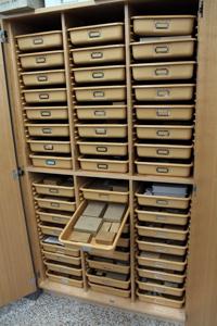 freshwater fish skeleton cabinet